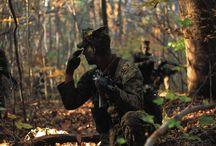 United States Marine Corps / Saepe Expertus, Semper Fidelis, Fratres Aeterni