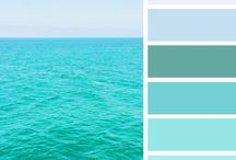 speed color palette