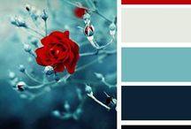 Color Palette_for DARK BG