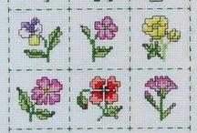 kwiatki cros