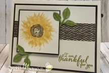Stampin' Up! Fall Fest / These are cards and projects I've created using Stampin' Up! products for my 2017 Fall Fest. Full supply lists can be found on my blog www.stampwithpeggy.com come check it out.