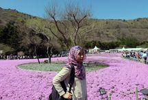 Japan Travel Blog Post