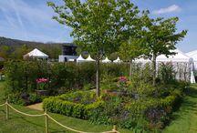 RHS Malvern Spring Festival 2016 / UCARE garden designed by Emily Sharpe of Garden Stories won a silver gilt at the RHS Malvern Spring Festival 2016.