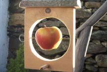 Uccellini affamati - Bird Fender  -