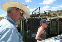 Real Washington Farmers & Ranchers / Images from around the family farms and ranches in Washington where beef is raised.