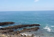 Enjoying San Diego California