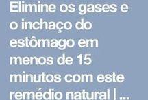 gases injasso
