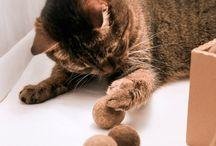 шарики для кошек