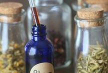 Herbs recipes tincture