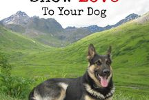Pets / All the best tips and tricks to take care of and spoil your pets!  Includes products training tips and care tips.
