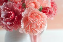 cup cake filter flowers