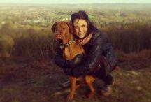 Hungarian Vizsla - Ruger - The Ginger Whinger <3 / Sunday Walks