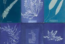All things Blue-My Favorite Color / by Kathy Heisleman