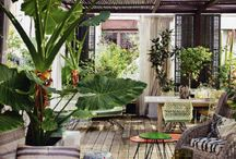 Outdoor deck with plants