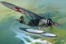 Polish Airforce
