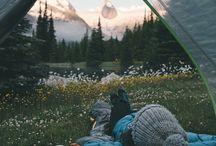 Natur og reise