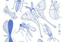 насекомые рисунок