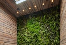 MISC - Green Wall