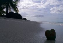 OFFERTE CAPODANNO AI CARAIBI / Capodanno ai Caraibi in barca a vela - Crociere ai Caraibi, Catamararnocaraibi.com per la crociera di capodanno in barca a vela ai Caraibi, Cuba, Grenadine,  Offerta crociera Capodanno in catamarano ai Caraibi con skipper 2014/2015 http://www.catamaranocaraibi.com/index.php
