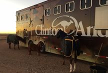 Walkabout Tours / The Walkabout Tour travels all across the country to inspire and educate horsemen.