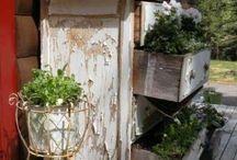 giardinaggio e balconi