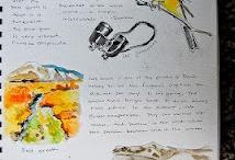 CM Nature Study