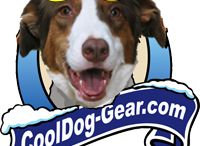 Cool gear for your dog / Cool Dog gear for your cool dog.