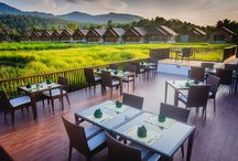The Farmer Restaurant / An amazing restaurant serving decade old recipes surrounded by a vastly open rice to experience a truly natural and authentic Thai dinner.