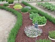 Zahrada / Úpravy okolo domu
