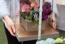 box flor
