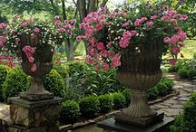 giardini e simili