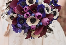 Wedding Ideas / by Jennifer Lloyd