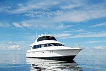 VISIT FLORIDA Partners / by VISIT FLORIDA