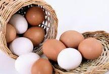 etiquetat dels ous