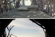 Favorite Places & Spaces / by Stacey Hansen