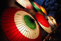 Japanese umbrella-Wagasa 和傘