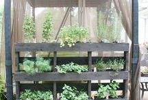 Plant concepts