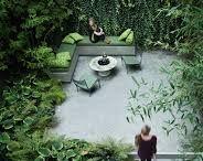 ZIELONE ŚCIANY/LIVING GREEN WALLS