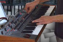 Synthesizer - Prophet 12 Keyboard