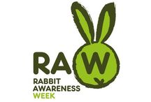 Rabbit Awareness Week 2015 / The theme of this year's Rabbit Awareness Week is #RoomForRabbits