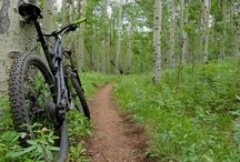 GROUP BOARD: Sweet Singletrack / Post a photo of your favorite singletrack trail! Bring on the most scenic, fast and flowy, or gnarliest of mtb trails! Please add the location :)