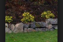 Slänten möjligheter & andra trädgårdsideer