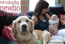 When fur baby meets baby baby