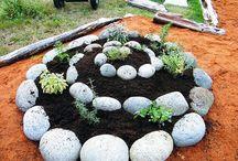Garden Ideas & Projects