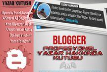 Blog Yazılarının Altına Yazar Bilgi Kutusu