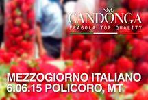 MEZZOGIORNO ITALIANO 6 GIUGNO 2015 POLICORO / A Policoro in piazza Eraclea, Candonga Fragola Top Quality raccontata a Mezzogiorno Italiano. #candonga #fragola #topquality #policoro