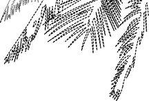 BORDADOS / Artes de bordados feitos para camisaria