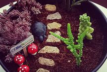 Neşeli Saksılar / fairy gardens ideas,terrariums and succulents