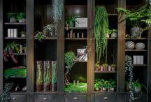 organic art / Indoor and outdoor gardening/deco ideas