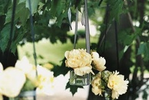 Wedding ideas  / by Erin Flewwelling
